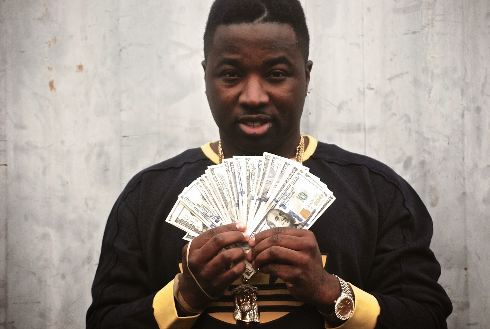 troy ave - pure truthllc